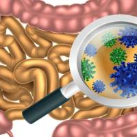 3 (unusual) ways to improve Gut health
