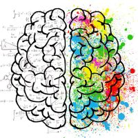 The 4 most important ways to optimize Brain Health