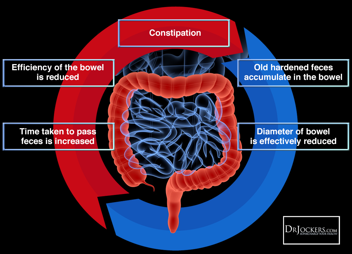 Bristol_ConstipationCycle1