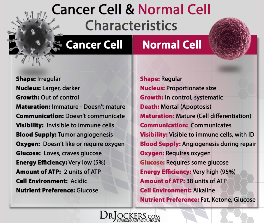 CANCERCELLS_Normal-and-Cancer-Cell-Characteristics_2-1024x863