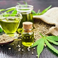 A Growing Interest in CBD and Physical Therapy
